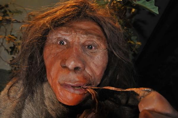 Dans la peau d'un Homme préhistorique !