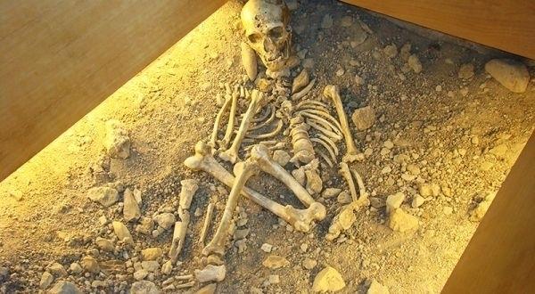Musée de l'Homme de Néandertal