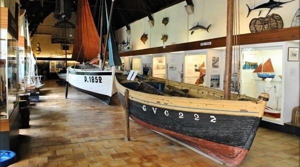 Musée de la Pêche, collections