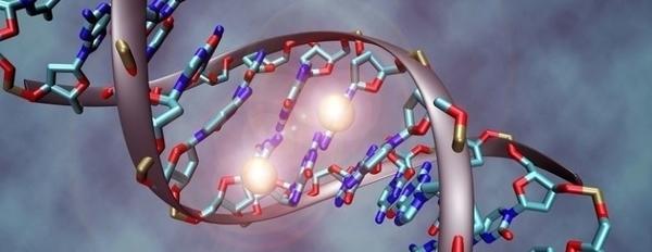 Les outils de modification du génome