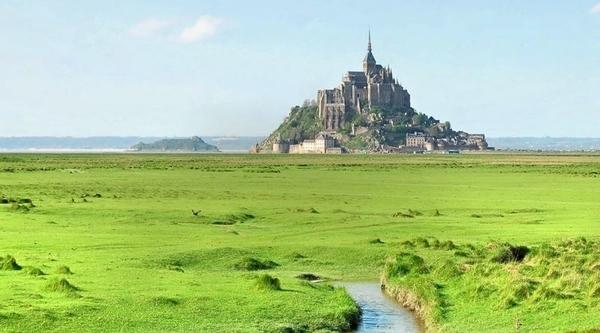 Découverte des prés salés de la Baie du Mont Saint-Michel