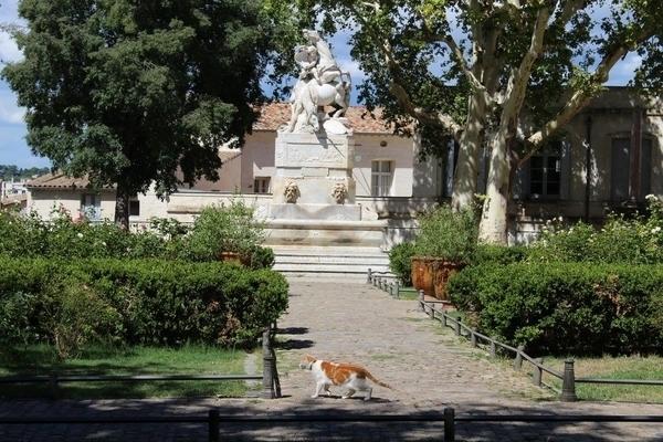 Le nord de l'Ecusson de Montpellier : culture et gastronomie