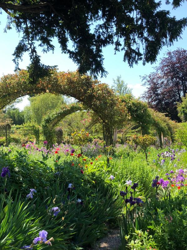 Le jardin au fil des saisons