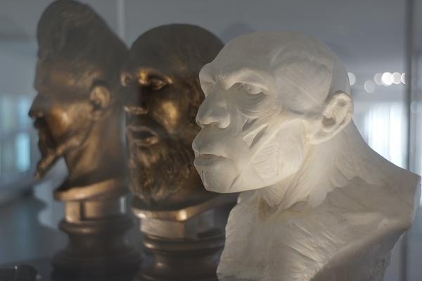 Néandertal : le temps d'une journée, le temps d'une vie, le temps d'une espèce