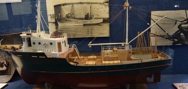 Musée de la Pêche, collections (famille)