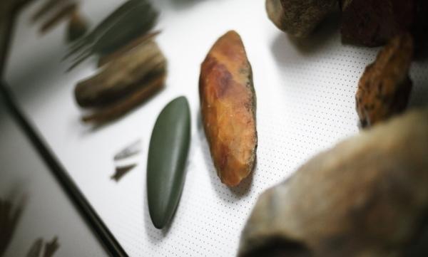 100 000 ans de Préhistoire, de Néandertal aux premiers agriculteurs