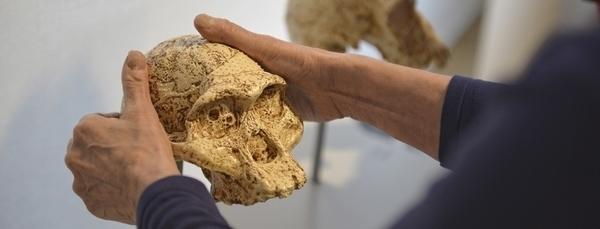 """Visite Sensorielle """"à la découverte de Néandertal"""""""