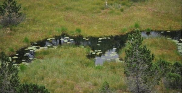 Réserve Naturelle du Luitel