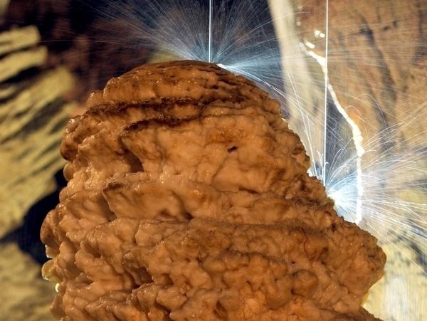 La grotte de la Salamandre contemplative