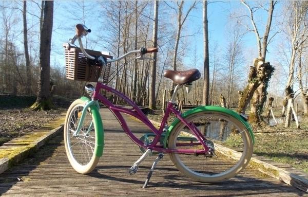 Sèvre Niortaise et Donjon à vélo