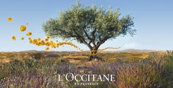 Usine l'Occitane en Provence