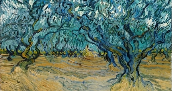 Fondation Vincent Van Gogh