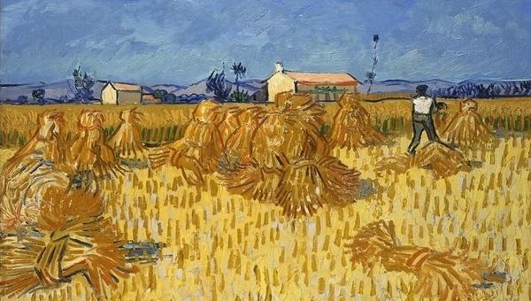 Fondation Vincent Van Gogh, le midi