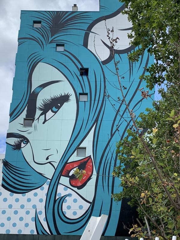 Visioconférence > Une brève histoire du Street Art