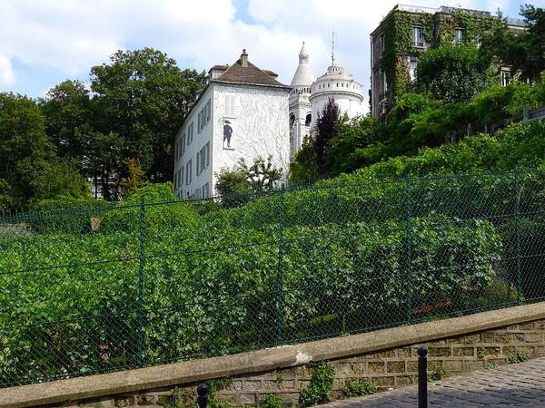 Cités d'artistes, jardins, moulins et vigne de Montmartre